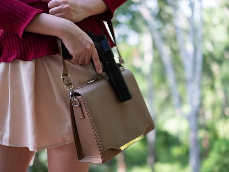 Montana constitutional campus carry gun